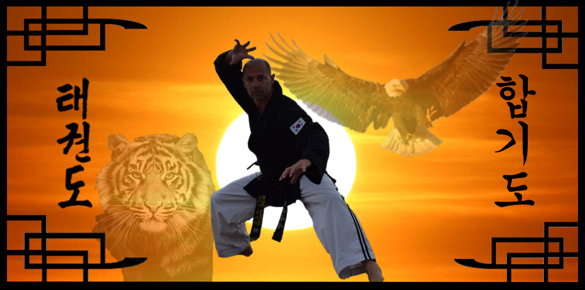 Martial tigre et aigle